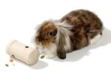 Karlie Snack Roll Geschicklichkeitsspielzeug für Kaninchen