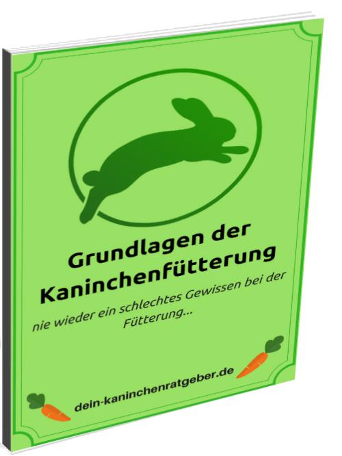 Kaninchenbuch